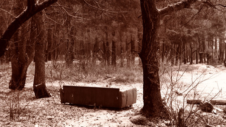 aloneness: Sofa in the forest. Under the snow. Sepia Stock Photo