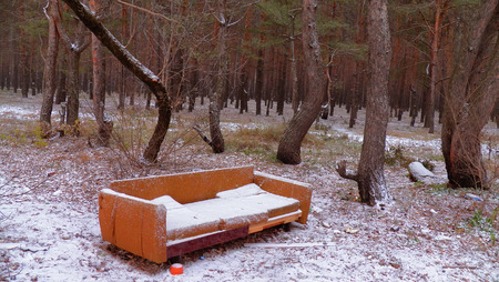 aloneness: Sofa in the forest. Under the snow. Fun Stock Photo