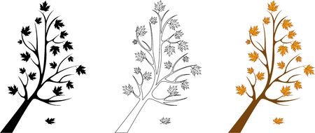 fall leaves on white: vector set of maple trees
