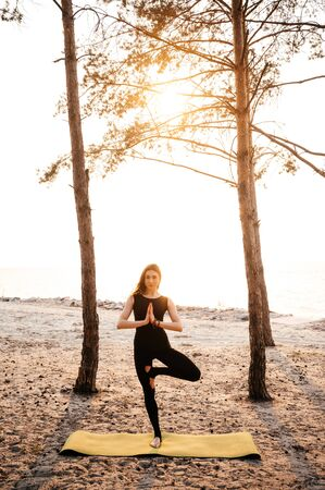 Yoga on nature. Attractive girl practices yoga on the nature at sunset
