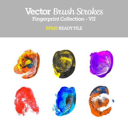 Vector Colorful Fingerprint Collection  Vector