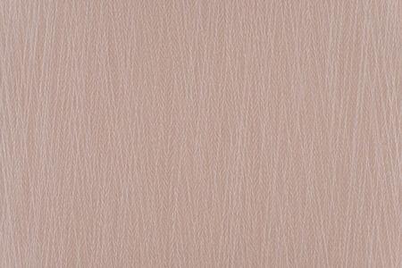 veiny: Fondo claro Brown textura de papel con copyspace Foto de archivo