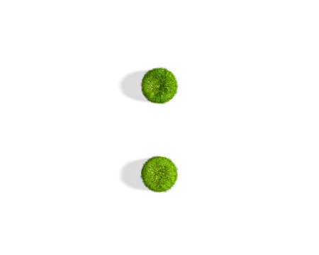 Grass colon punctuation mark from isometric angle with shadow on ground. 3D illustration isolated on white background. Stok Fotoğraf