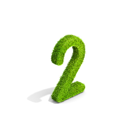 Grass number 2 from isometric angle with shadow on ground. 3D illustration isolated on white background. Stock Photo