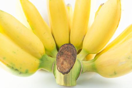 Golden Banana  photo