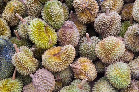 dissect: Durian three results in  background Stock Photo