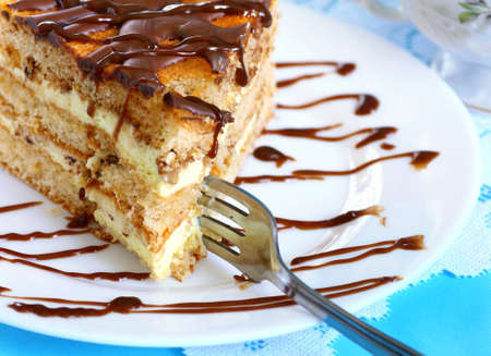 Close up of piece of biscuit cake with chocolate and cream Stock Photo