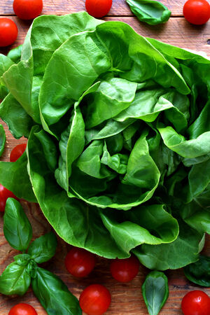 Close up of fresh, green lettuce with cherry tomatoes and basil leaves Stock Photo