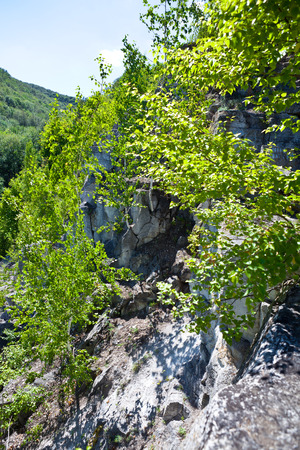forested: views of the landscape of forested mountains Stock Photo