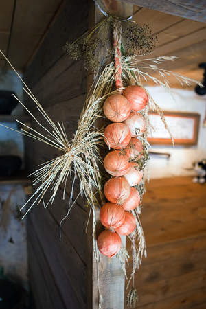 tied in: onions tied in a pigtail storage hanging on the wall of the village huts Stock Photo