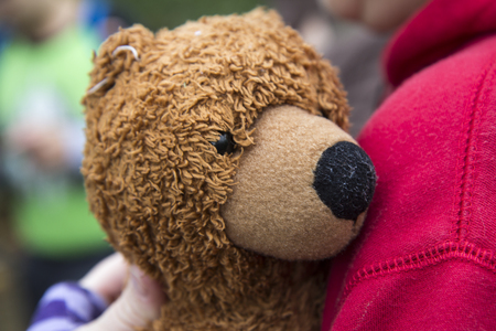 fuzzy: Brown fuzzy teddy bear being held