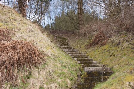 Country steps