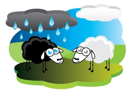 Black sheep with rain cloud Stock Vector - 10461699