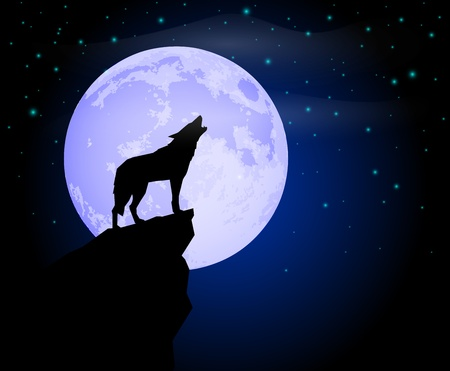 the wolf: Lupo che ulula