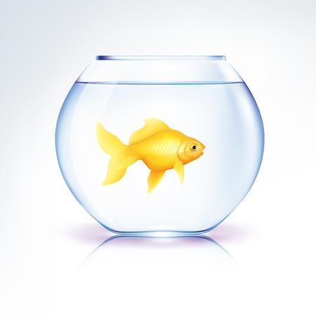ボウルに孤独の金の魚  イラスト・ベクター素材