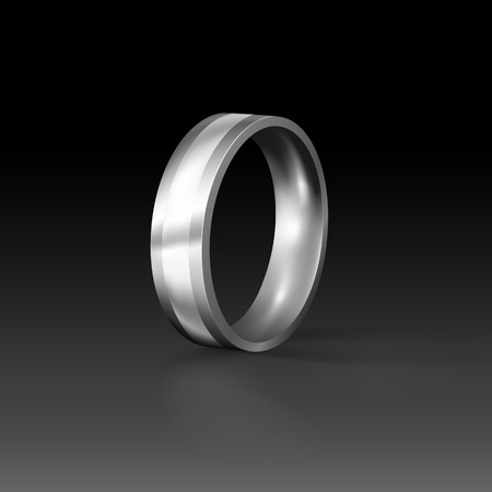 titanium: Titanium Mens Wedding Ring (EPS10)