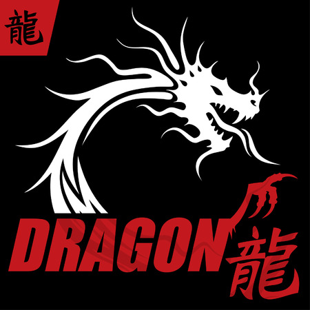 mysterious: Mysterious Dragon Design Concept