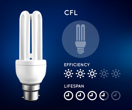 compact fluorescent lightbulb: Compact Fluorescent Light Bulb Infographic Illustration