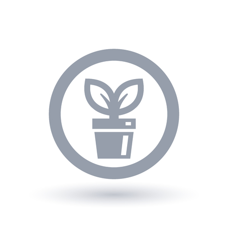 Pot plant icon in circle outline. Indoor plant symbol. Houseplant sign. Vector illustration.