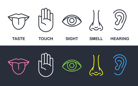 5 human body senses sign set with nose for smell, tongue for taste, hand for touch, eye for sight, and ear for hearing - line icons. Vector illustration.