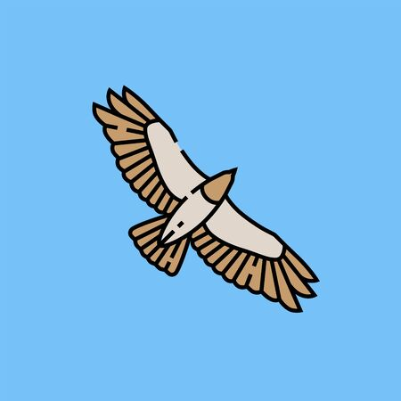 Eagle flight line icon. Hawk wingspan symbol. Bird of prey flying graphic isolated on blue background. Vector illustration.