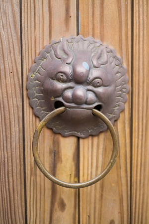 ornate copper door and lion knocker  Stock Photo
