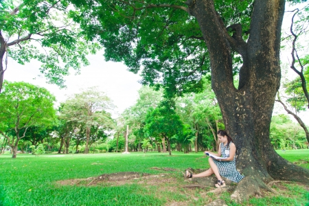 Woman reading a book against big tree, outdoor photo