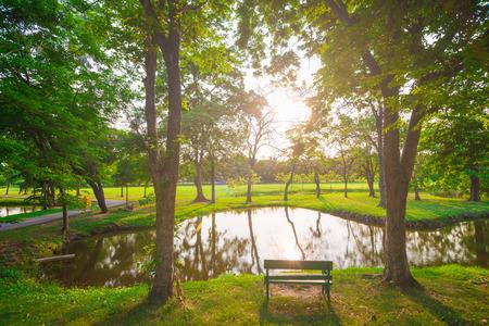 paisaje rural: Puesta de sol en un hermoso parque, Parque de la ciudad bajo la luz soleado