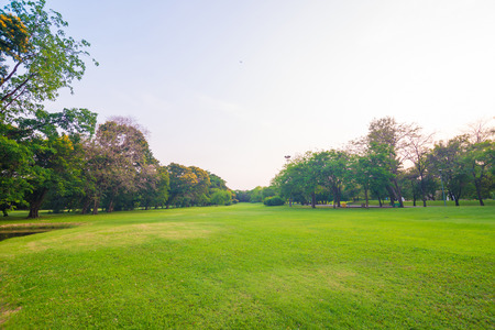 recreation area: Green lawn in park and recreation area, Green Scenery Stock Photo