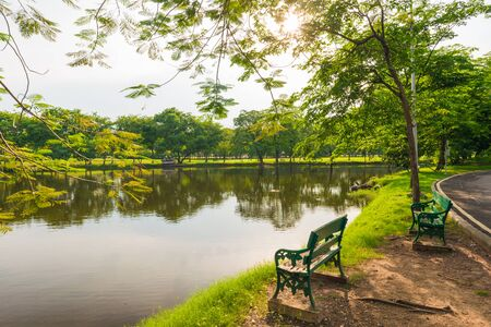 Bench in Green lawn at city park, Beautiful park photo
