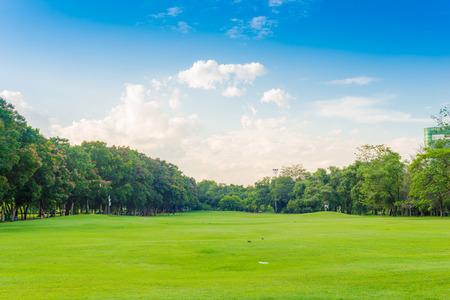 Beautiful meadow and tree in the park, Bangkok Thailand Standard-Bild