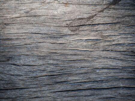 wood panel: wood texture bord background, old panel