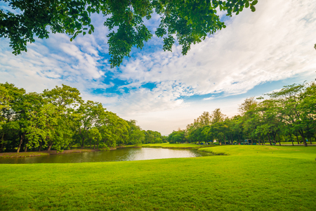 反射、公共の公園で池と湖の上のカラフルな木