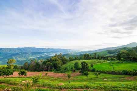 elusive: Mountain landscape in morning, Thailand Stock Photo
