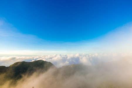 sub: Peak of mountain fog in morning sub alpine forest