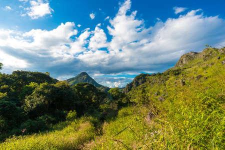 sub: Meadow on sub alpine mountain tracking  blue sky
