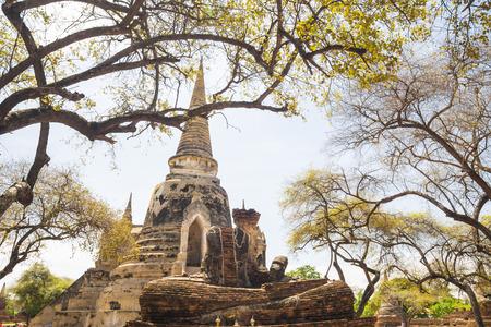 phra nakhon si ayutthaya: Wat phra si sanphet (wat mongkol bophit) Old pagoda Temple Historical Park, Phra Nakhon Si Ayutthaya, Thailand.