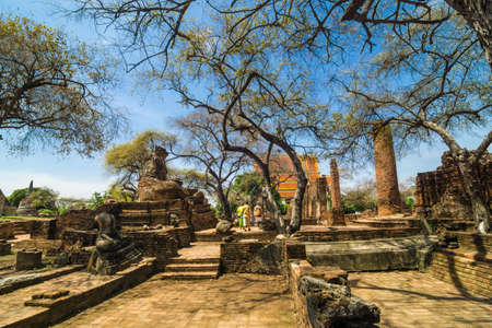 phra nakhon si ayutthaya: Ayutthaya Historical Park with Tree branch blue sky, Phra Nakhon Si Ayutthaya. Thailand.