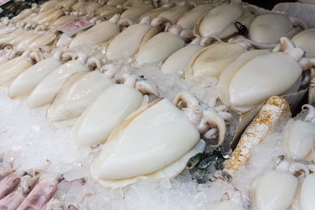 Fresh Squid on ice in market, Seafood