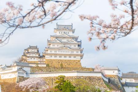 일본 최고의 여행지 인 사쿠라가있는 히메지 성, 효고 일본