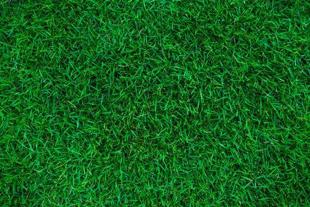 grass soccer field. Green Nature Grass Soccer Field Background Top View Stock Photo - 80183456