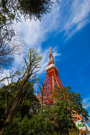 Tokyo tower red modern building with green tree blue sky
