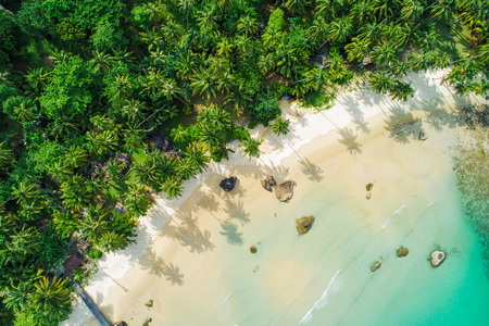 Amazing white sand beach sea shore with coconut palm tree shadow in morning aerial view. Stock Photo