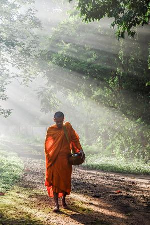 Monje budista caminando en la luz del atardecer del bosque con niebla, concepto de naturaleza religiosa