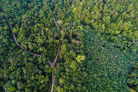 Aerial view tropical green forest on island nature landscape Banco de Imagens