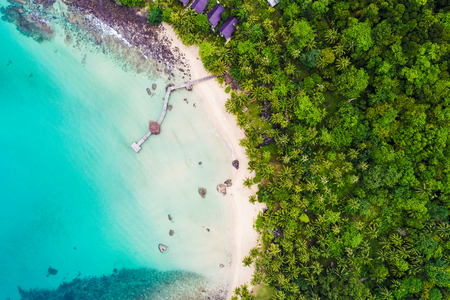 White sand beach clear turquoise sea water with coconut palm tree aerial view