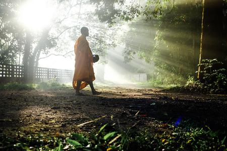 Boeddhistische monniksmeditatie in tropisch bos, spiritueel concept