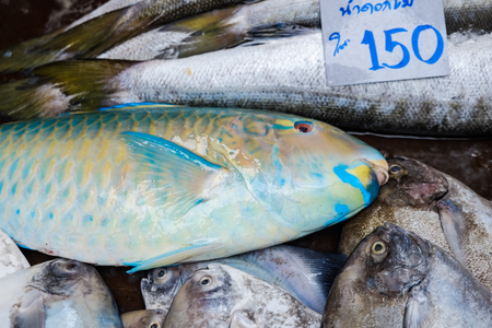 Seafood fish sell in traditional fishery market, Omega 3 food