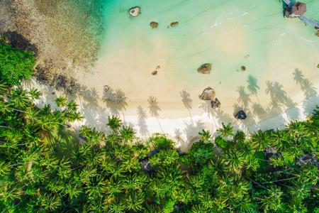 Aerial view sea island beach green coconut tree nature landscape