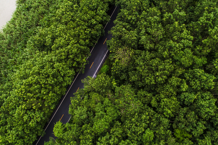 Aerial view green mountain forest with rural road tropical forest